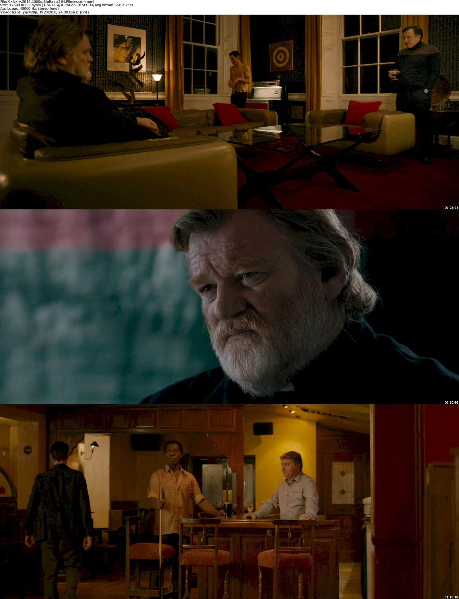 Calvary (2014) 1080p Screenshot