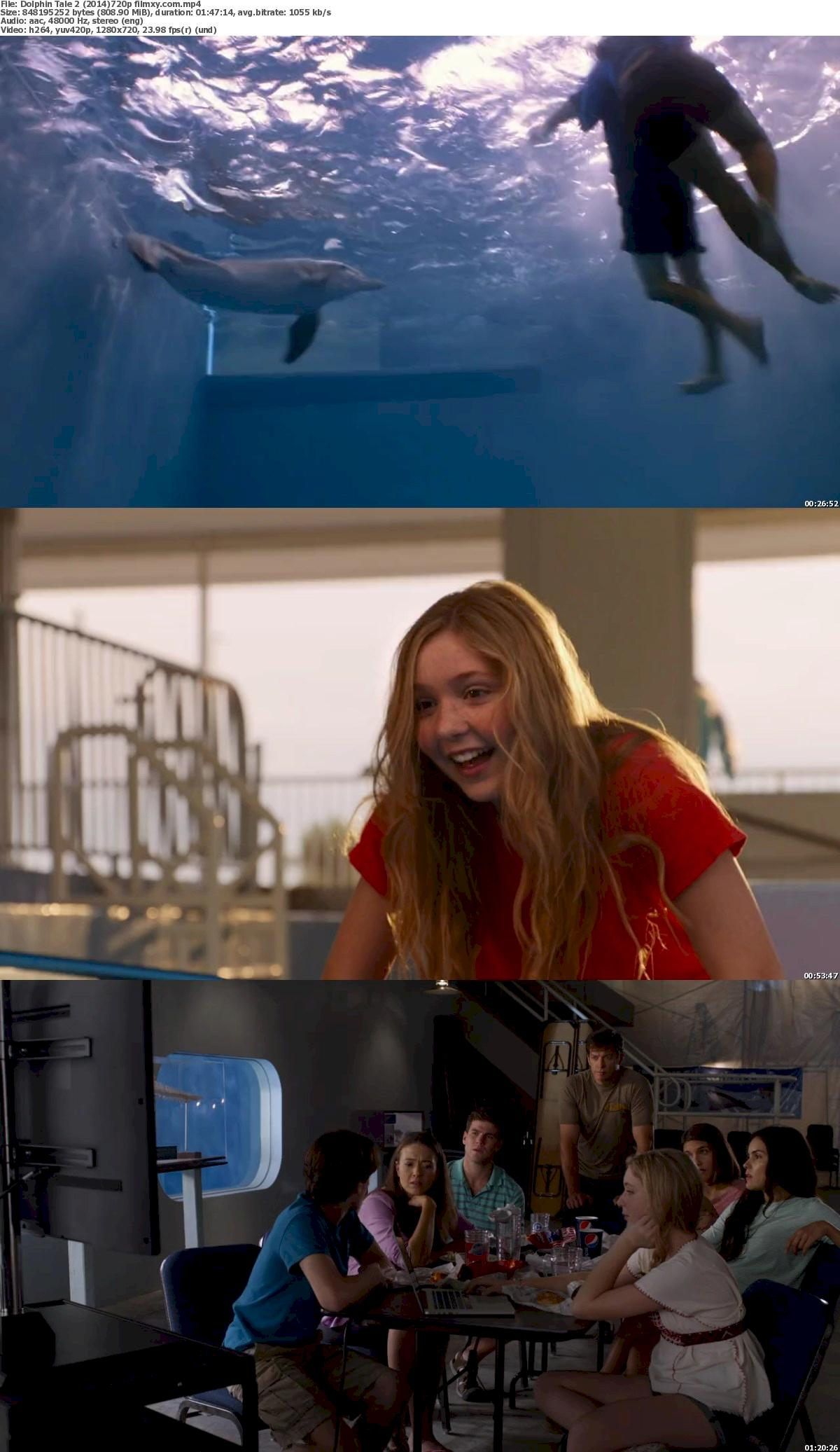 Dolphin Tale 2 (2014) 720p & 1080p Bluray Free Download 720p Screenshot