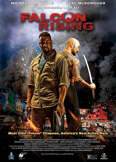 falcon_rising_cover