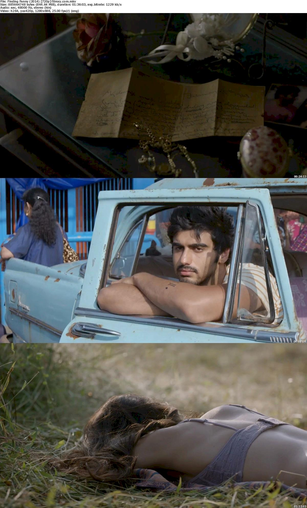 Finding Fanny (2014) 720p Bluray Free Download 720p Screenshot