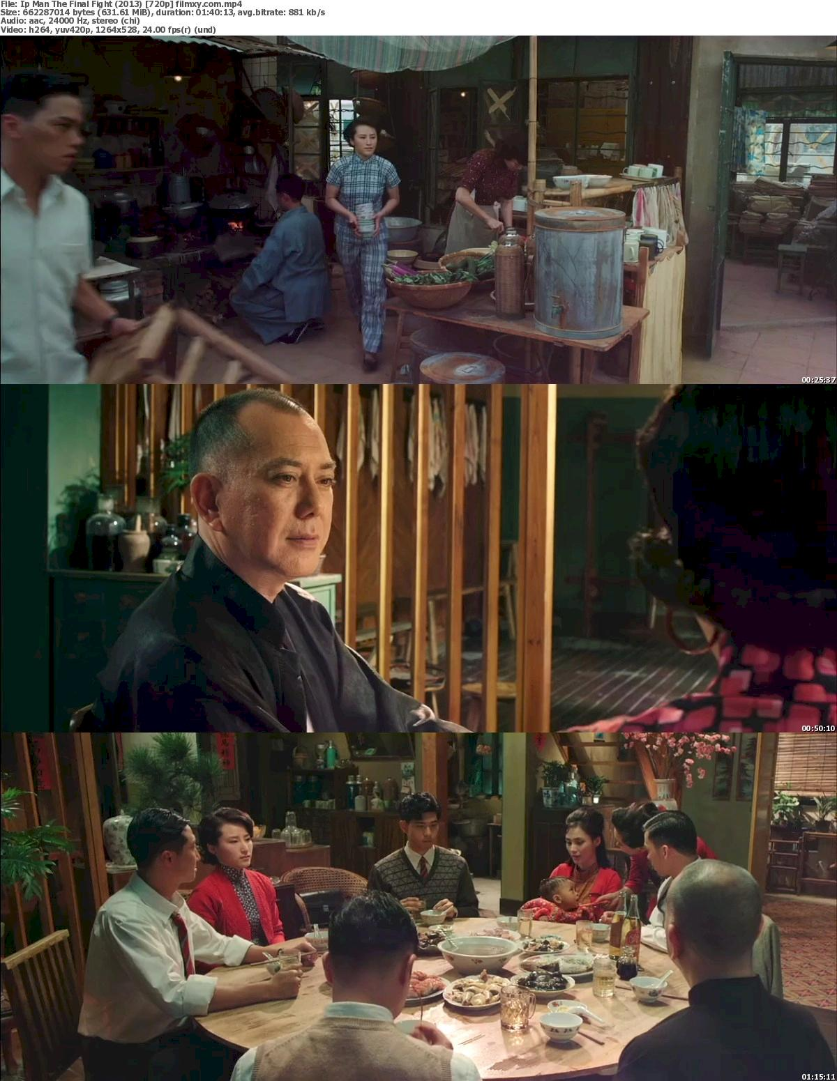 Ip Man The Final Fight (2013) 720p Screenshot