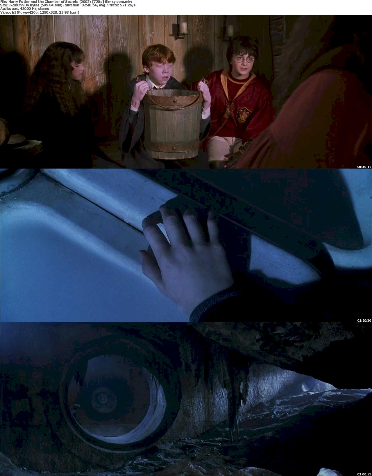 Harry Potter and the Chamber of Secrets (2002) 720p & 1080p Bluray Free Download 720p Screenshot