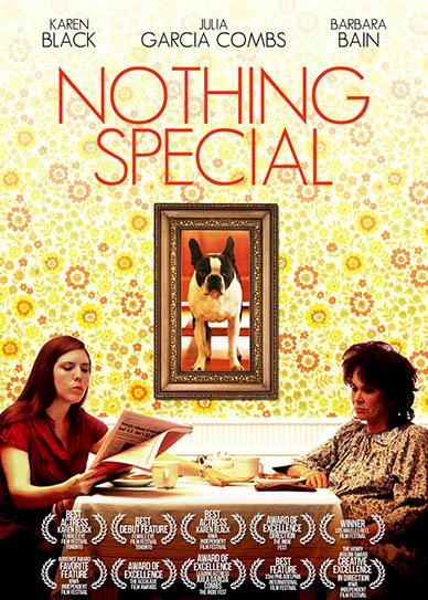 Nothing-Special-(2010)-cover