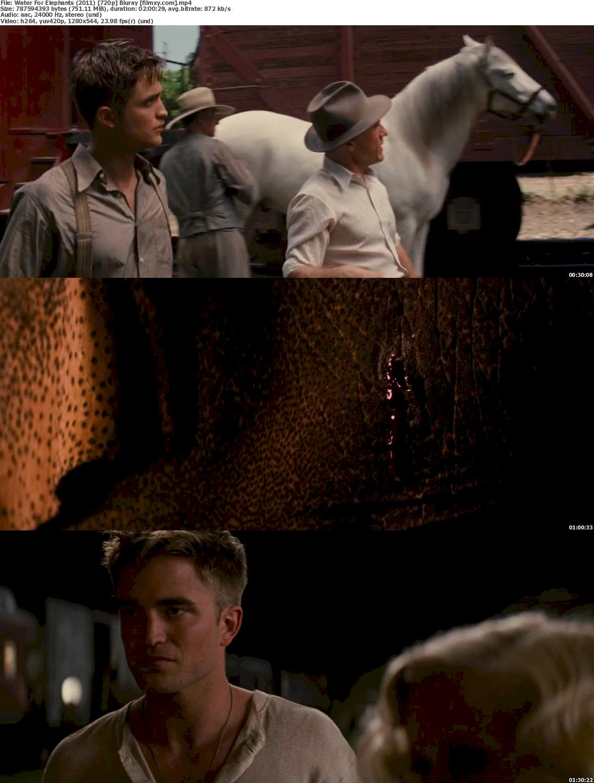 Water For Elephants (2011) 720p Bluray Free Download 720p Screenshot