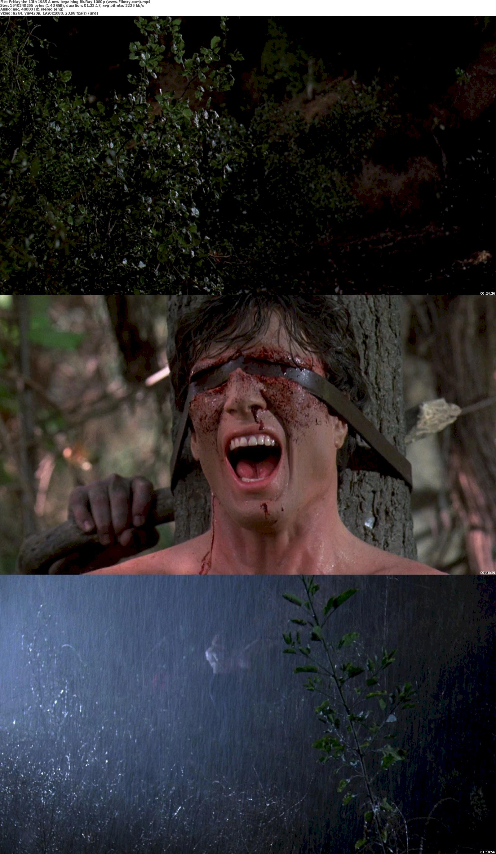 Friday the 13th (1985) A new begaining  BluRay 720p & 1080p Free Download 1080p Screenshot