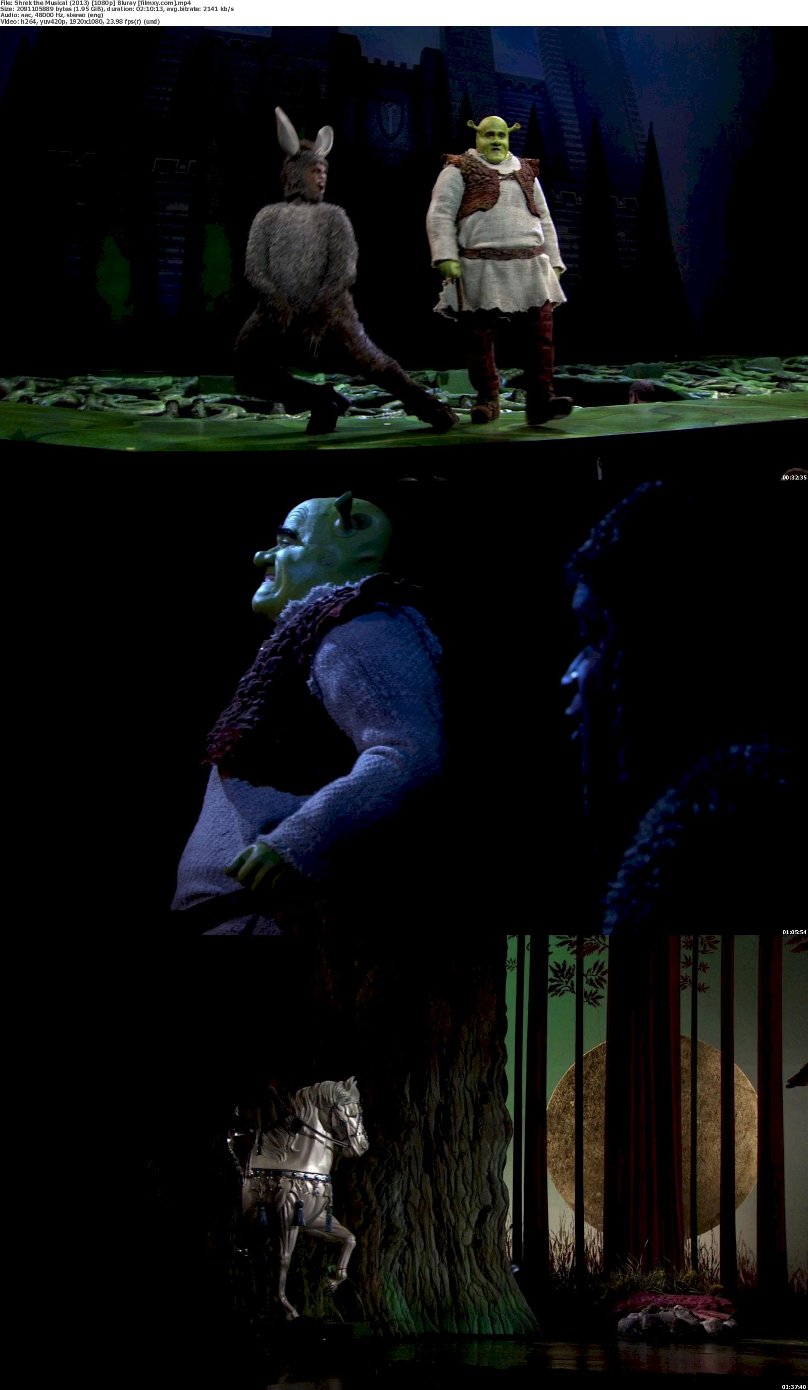 Shrek the Musical (2013) 720p & 1080p Bluray Free Download 1080p Screenshot