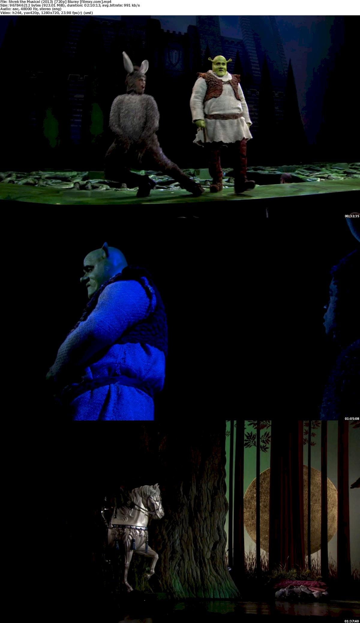 Shrek the Musical (2013) 720p & 1080p Bluray Free Download 720p Screenshot
