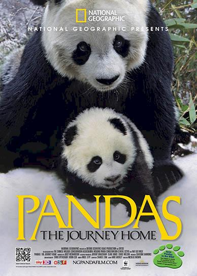 Pandas-The-Journey-Home-(2014)-cover