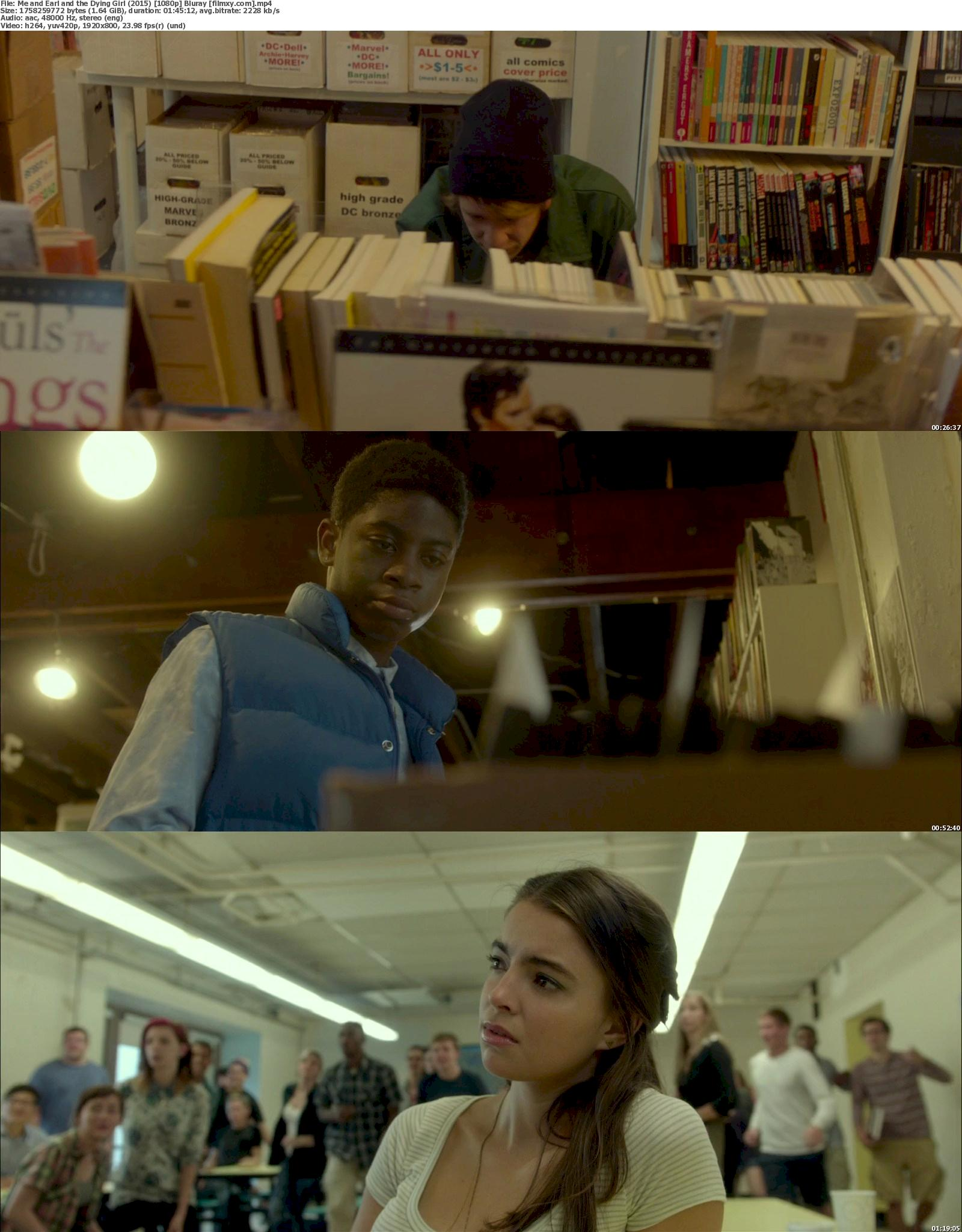 Me and Earl and the Dying Girl (2015) 720p & 1080p Bluray Free Download 1080p Screenshot