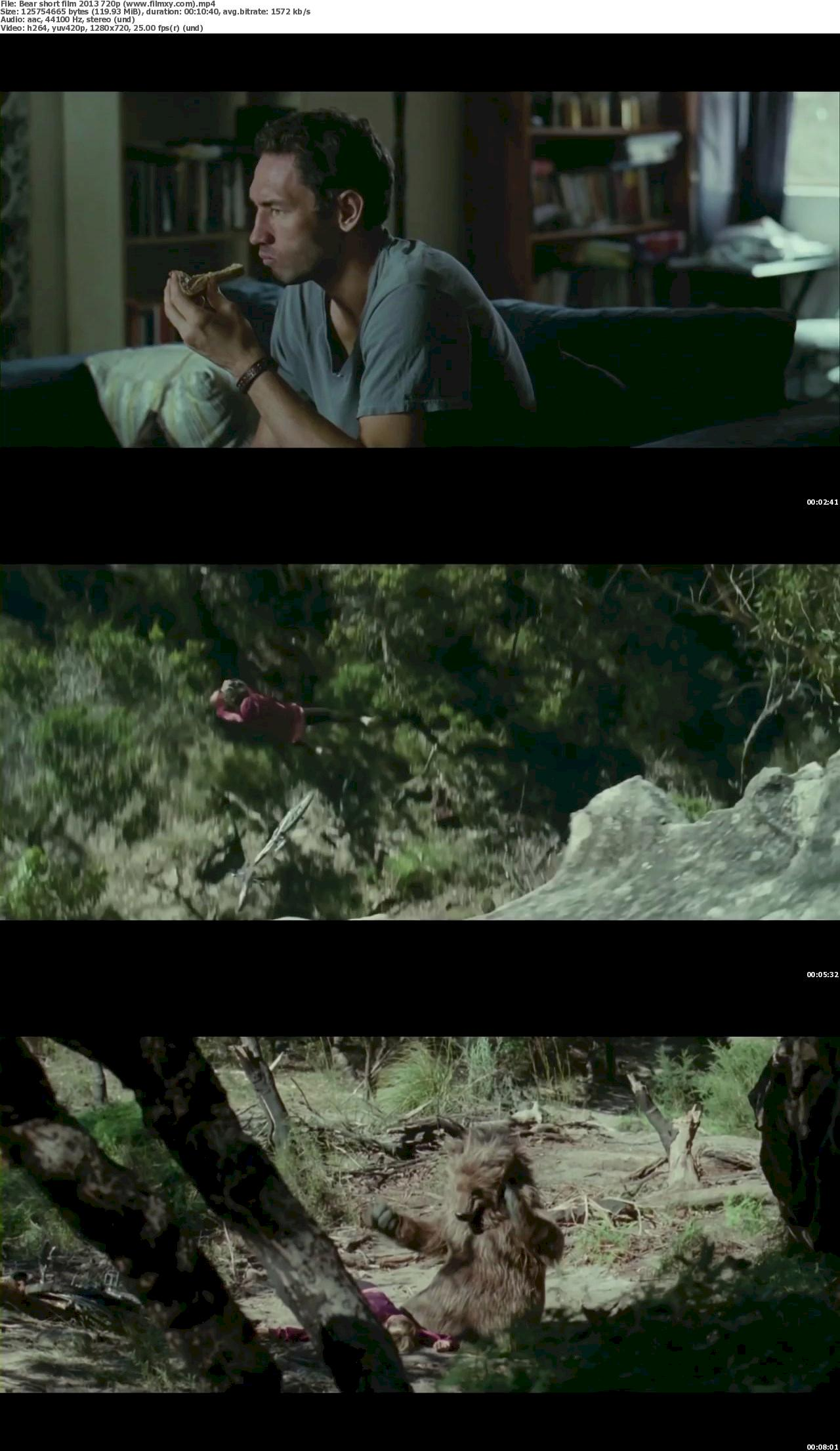 Bear (2011) [720p & 1080p] BluRay Free Download – Filmxy