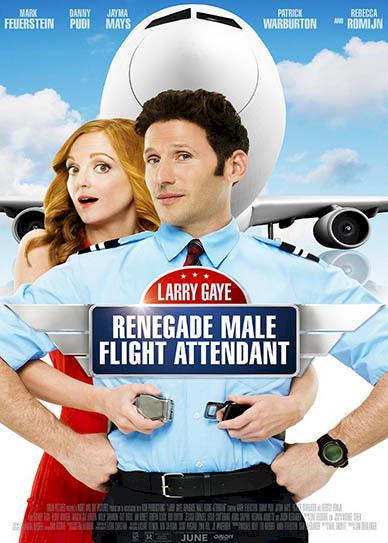 Larry-Gaye-Renegade-Male-Flight-Attendant-(2015)-cover