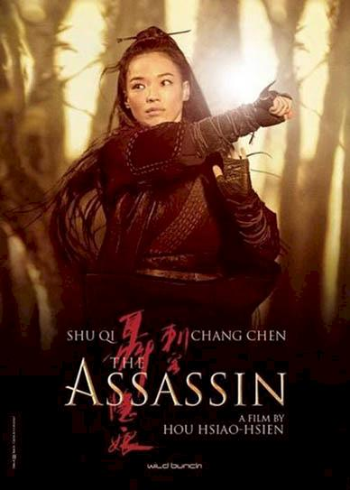 The-Assassin-(2015)-cover