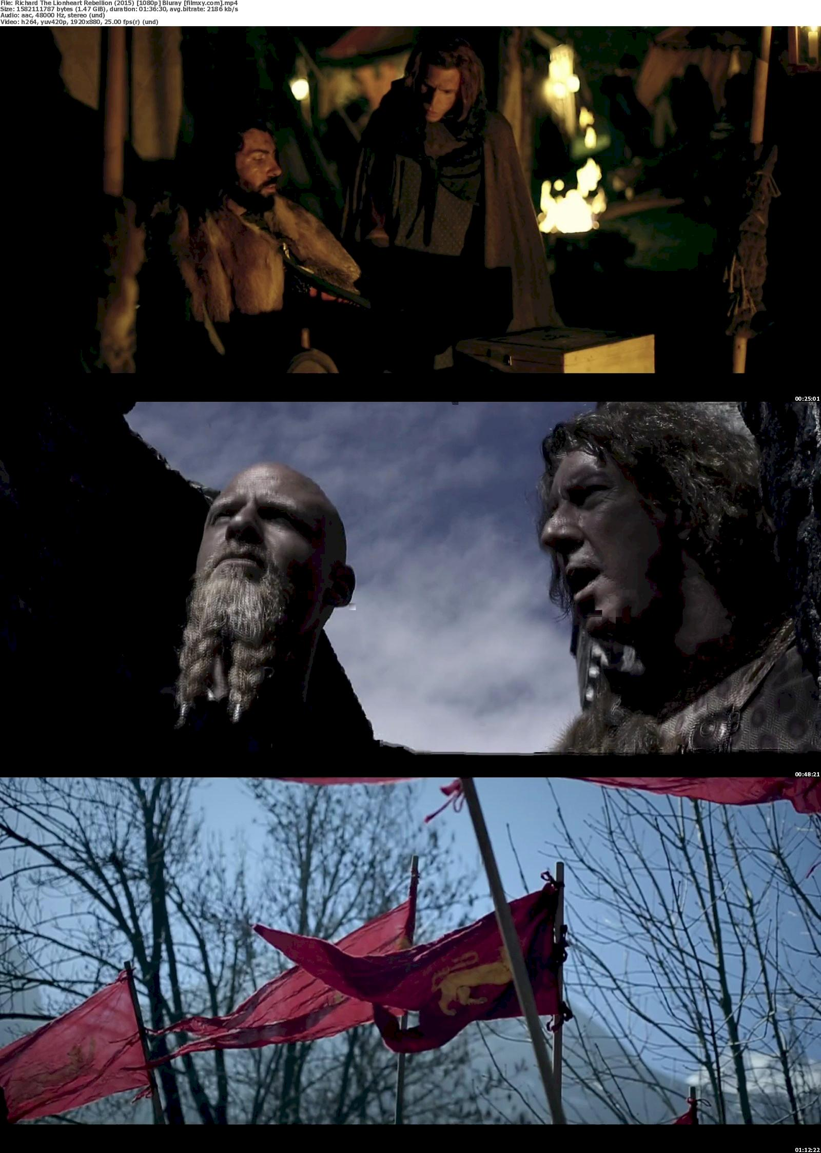 Richard The Lionheart Rebellion (2015) 720p & 1080p Bluray Free Download 1080p Screenshot