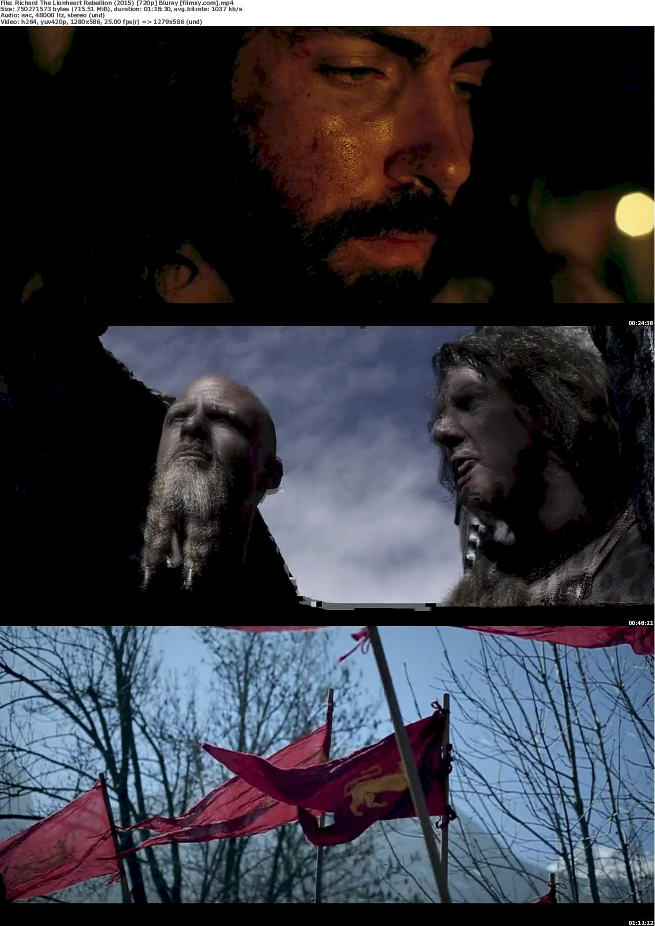 Richard The Lionheart Rebellion (2015) 720p & 1080p Bluray Free Download 720p Screenshot