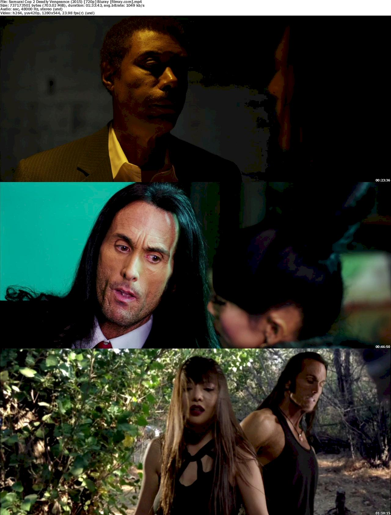 Samurai Cop 2: Deadly Vengeance (2015) 720p & 1080p Bluray Free Download 720p Screenshot