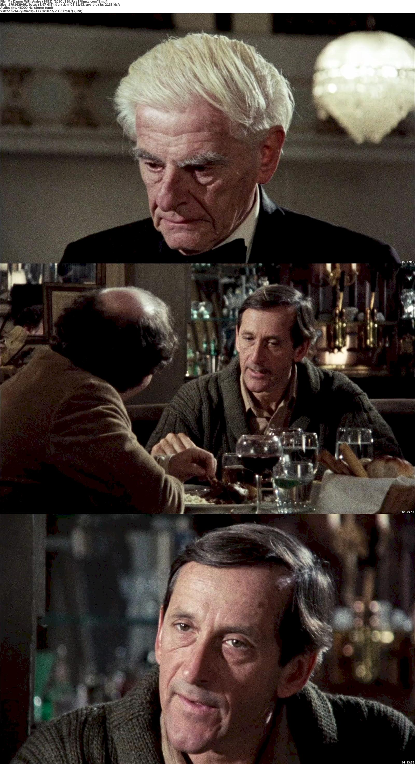 My Dinner with Andre (1981) 720p & 1080p Bluray  Free Download 1080p Screenshot