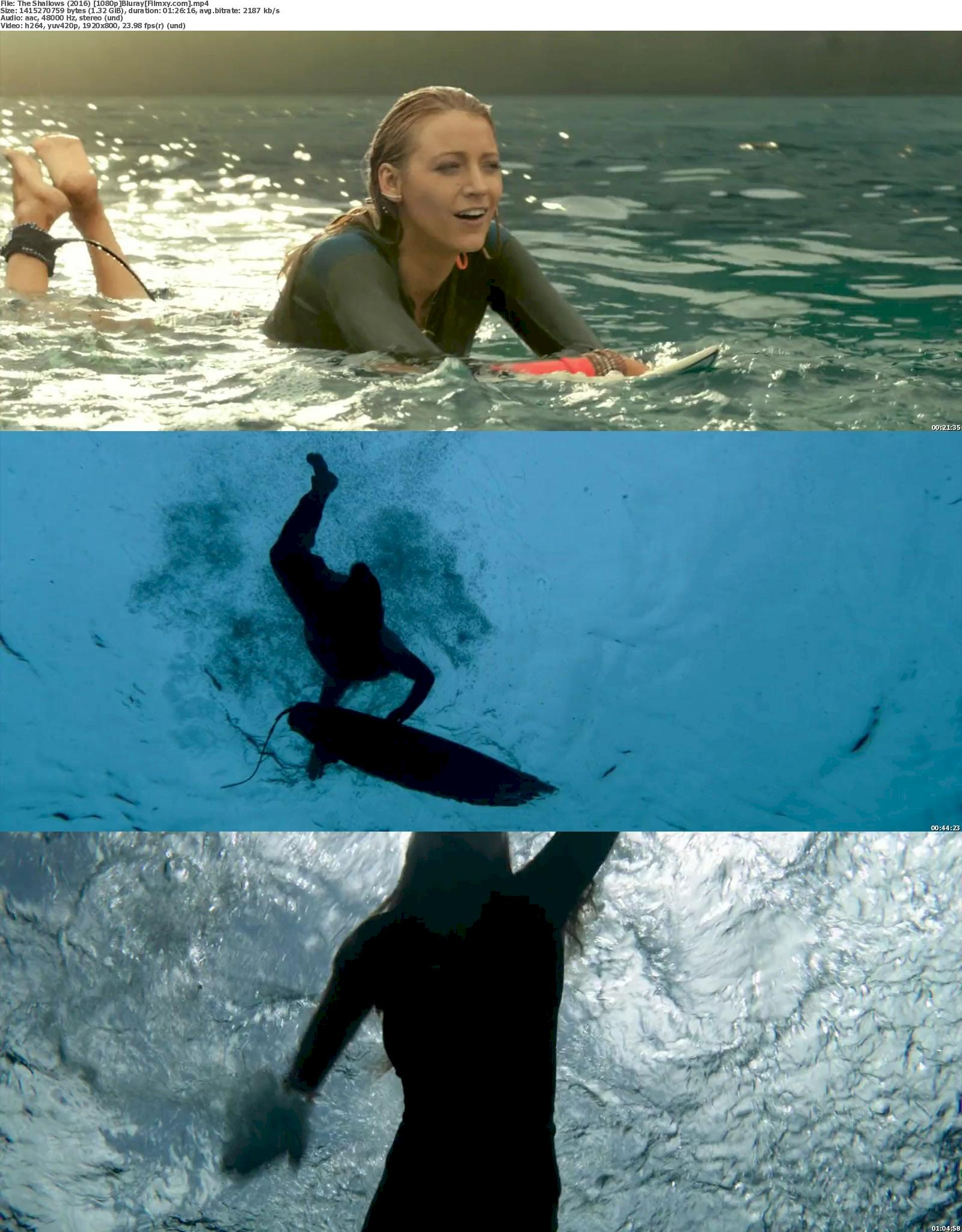The Shallows (2016) 720p & 1080p Bluray Free Download 1080p Screenshot