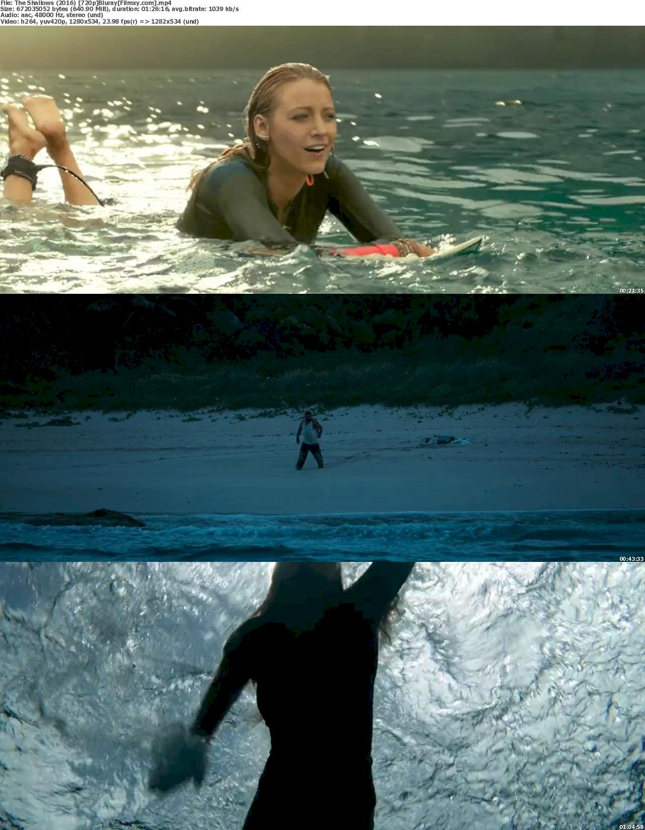 The Shallows (2016) 720p & 1080p Bluray Free Download 720p Screenshot