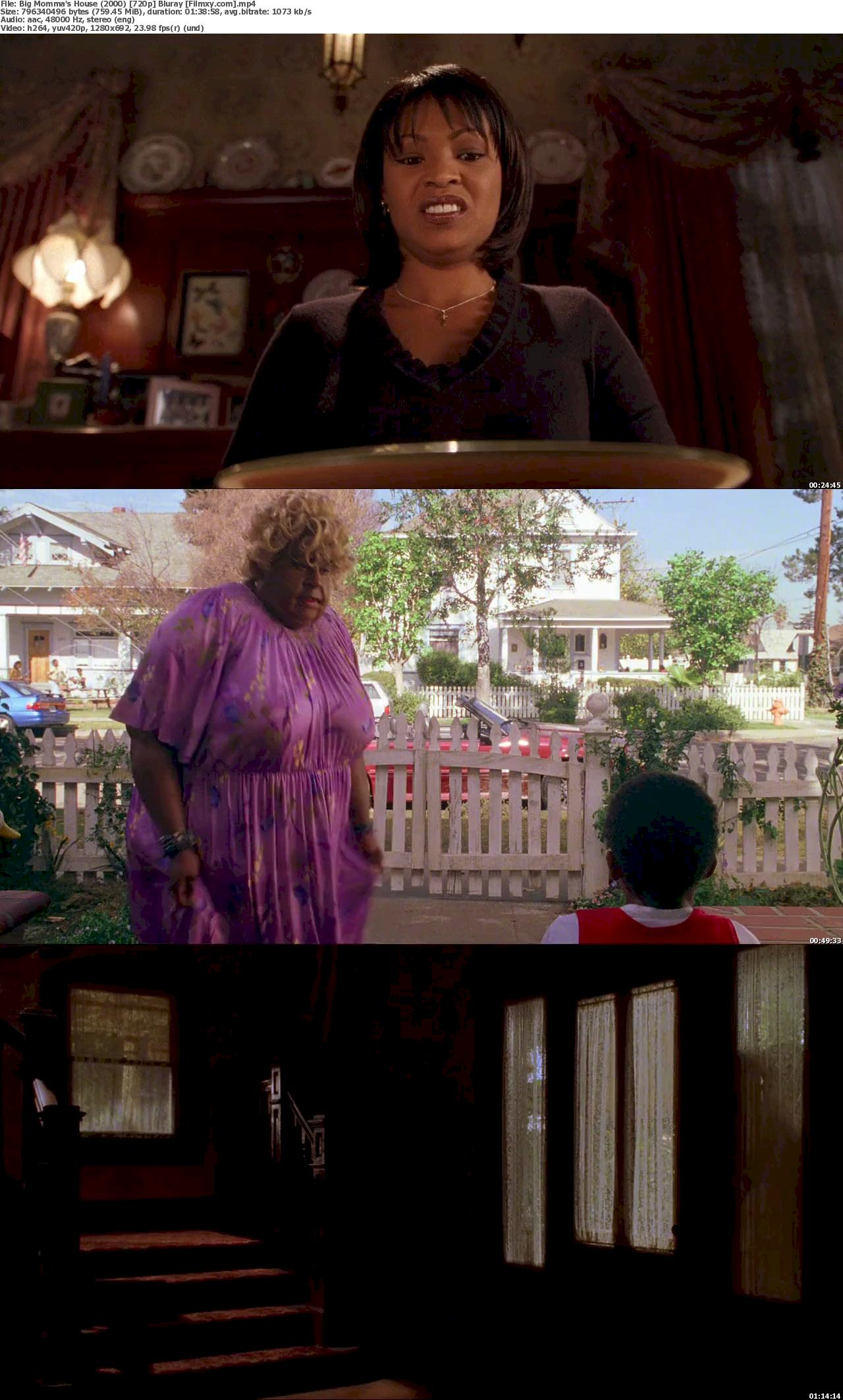Big Momma's House (2000) [720p & 1080p] Bluray Free Movie Watch Online & Download 720p Screenshot