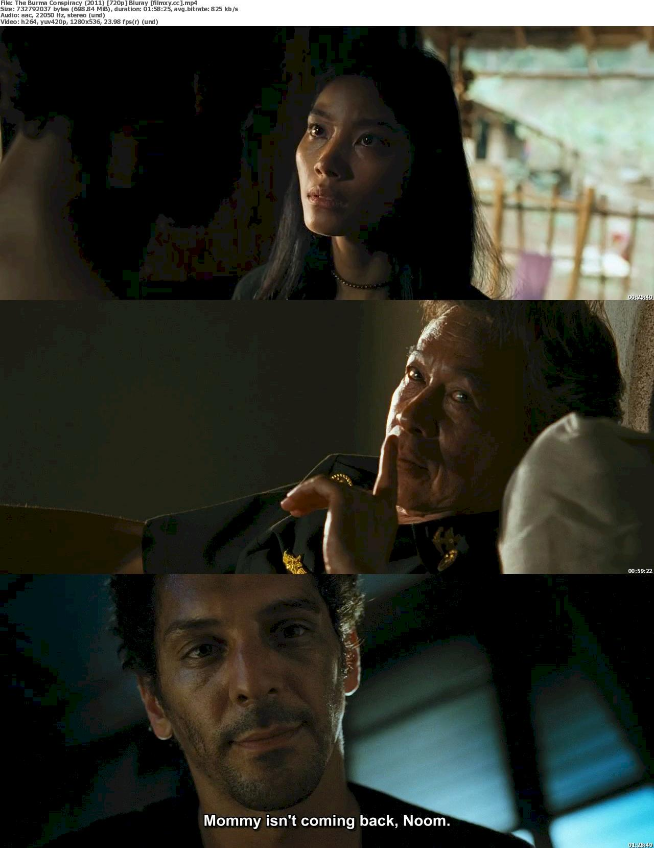 The Burma Conspiracy: Largo Winch II (2011) 720p & 1080p Bluray Free Download 720p Screenshot