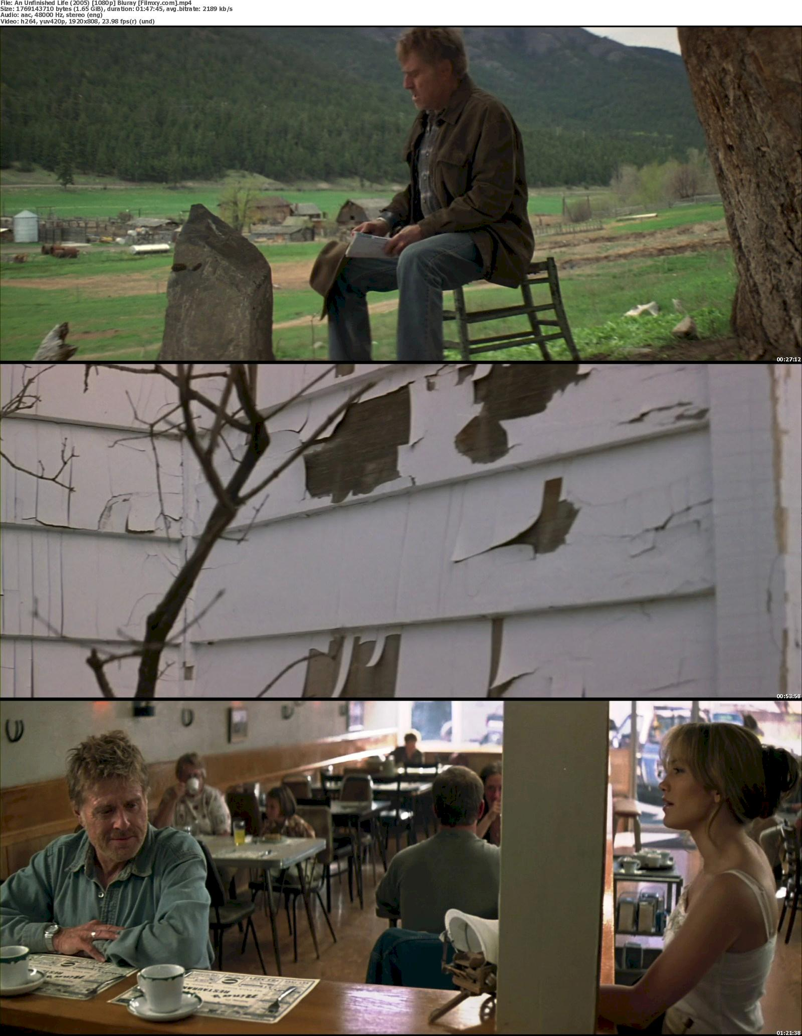 An Unfinished Life (2005) 720p & 1080p Bluray Free Download 1080p Screenshot