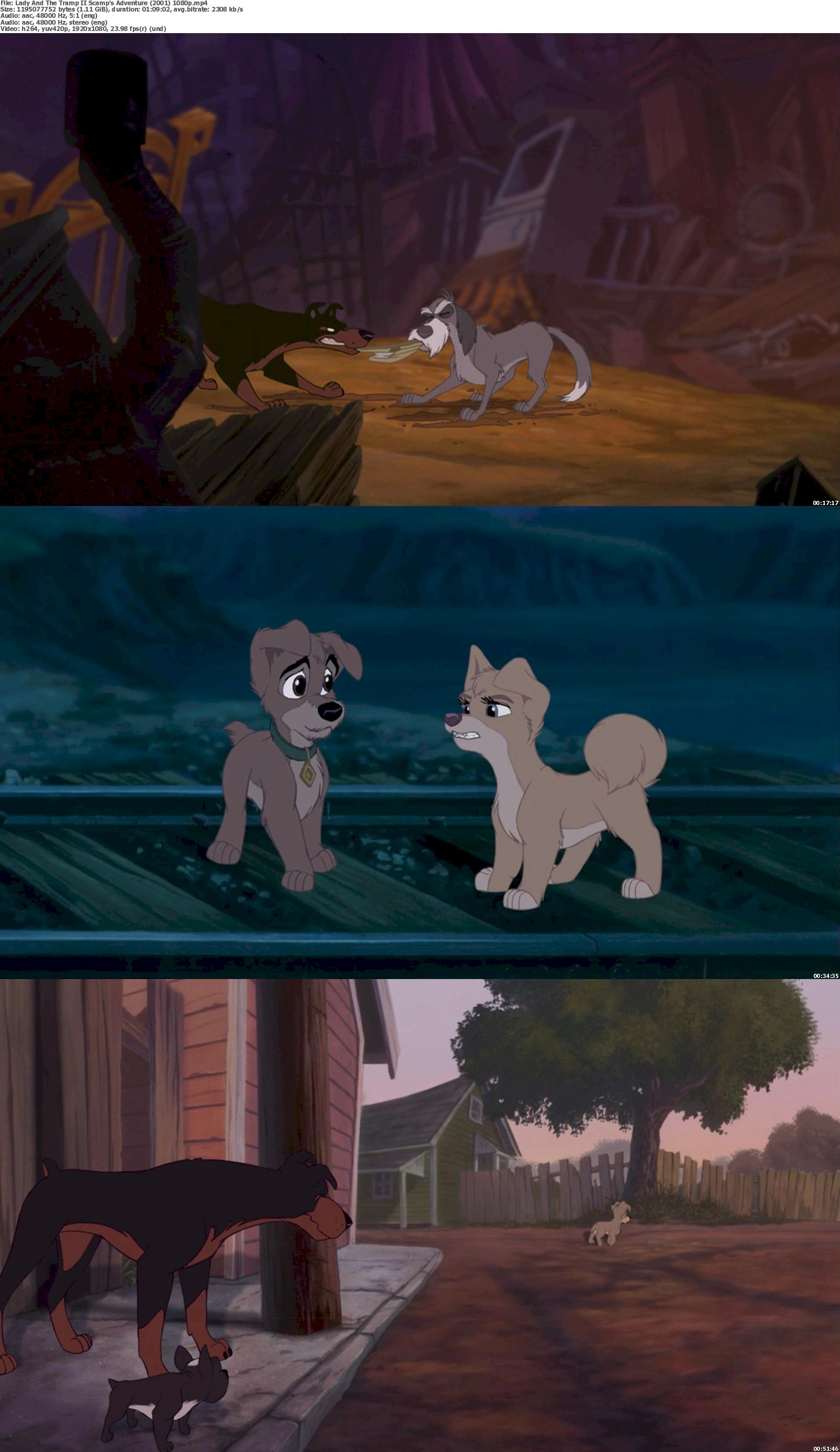 Lady and the Tramp 2: Scamp's Adventure (2001) 1080p Bluray Free Download 1080p Screenshot