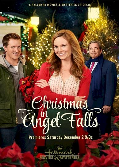 Christmas in Angel Falls (2017) cvr