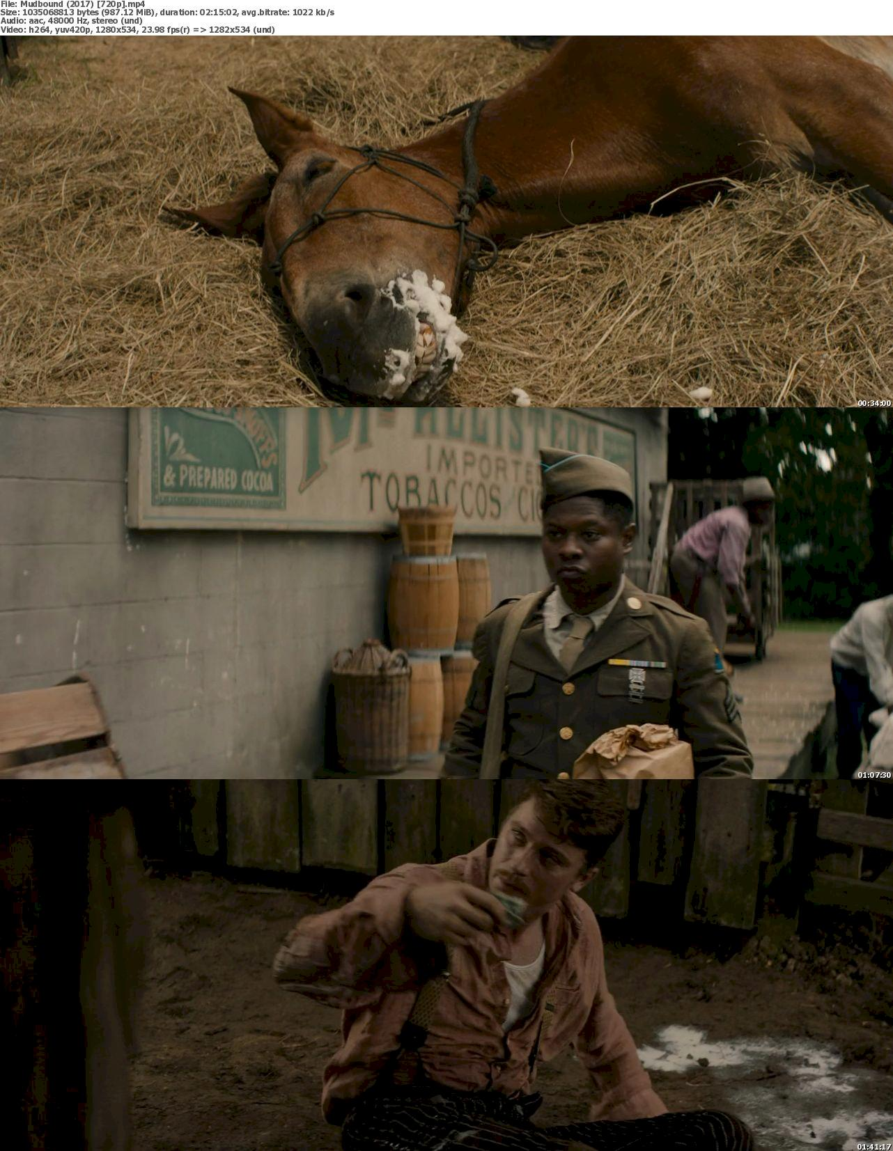 Mudbound (2017) 720p Bluray Free Download 720p Screenshot