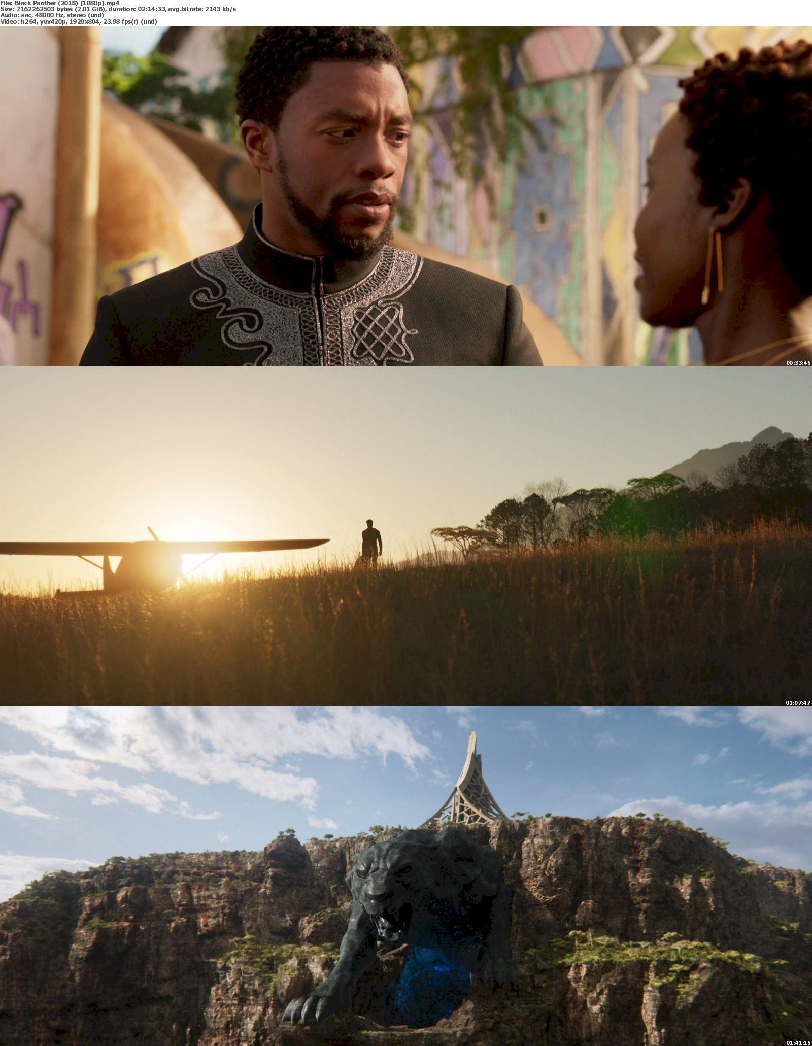 Black Panther (2018) [720p & 1080p & 3D] BluRay Watch Online & Download 1080p Screenshot