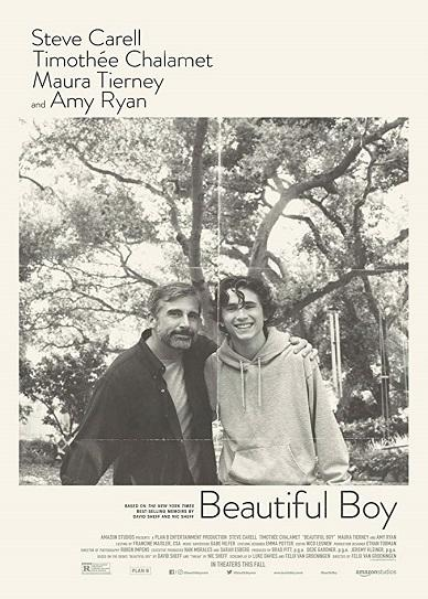 Beautiful Boy (2018) Cover