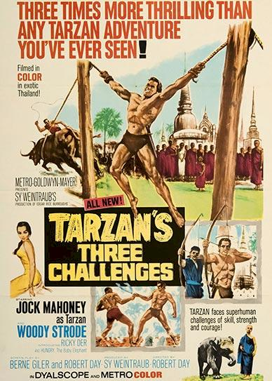 Tarzan's Three Challenges Cover