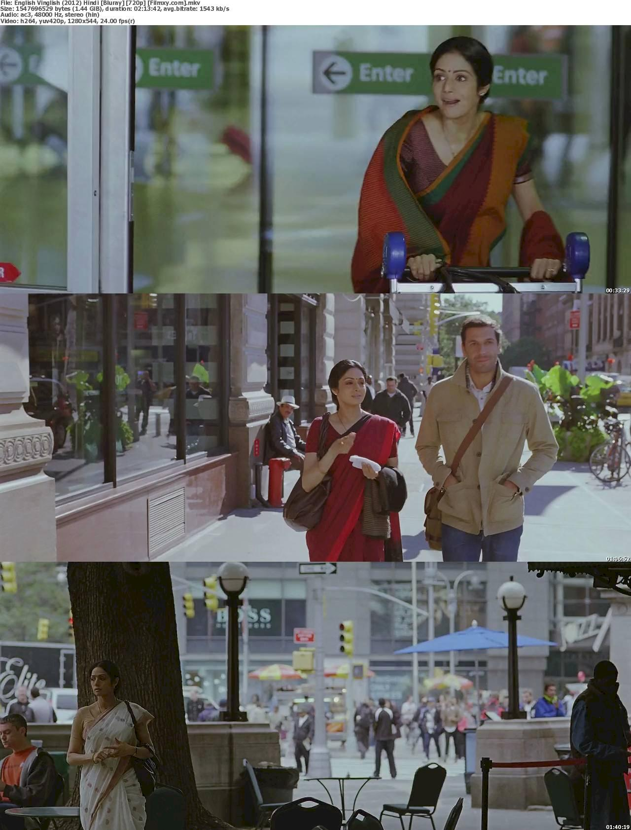 English Vinglish (2012) [720p & 1080p] Bluray Free Movie Watch Online & Download 720p Screenshot