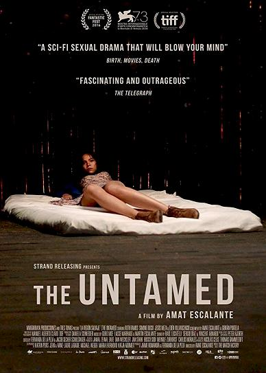 The Untamed Cover