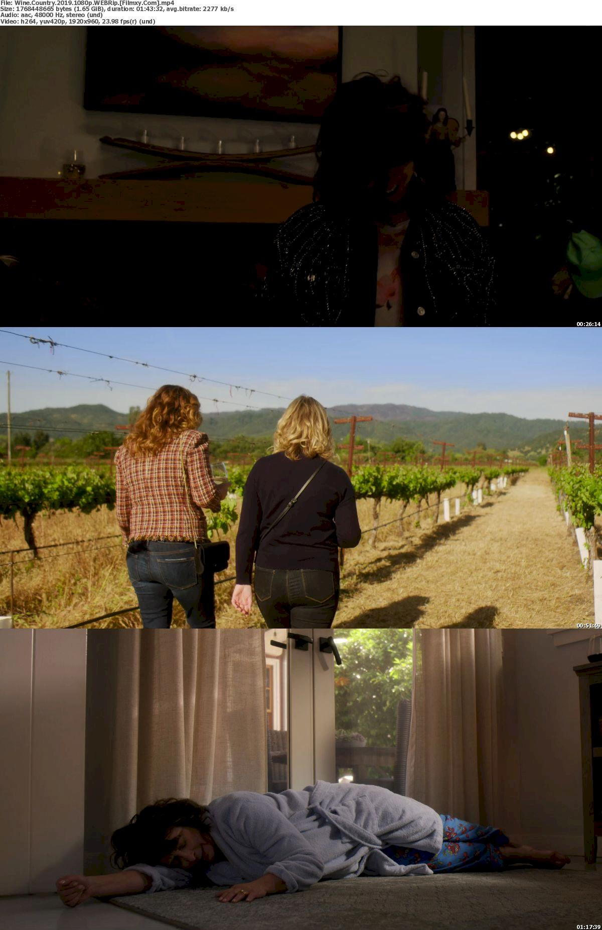 Wine Country (2019) 720p & 1080p Webrip Full Movie Watch Online & Free Download 1080p Screenshot