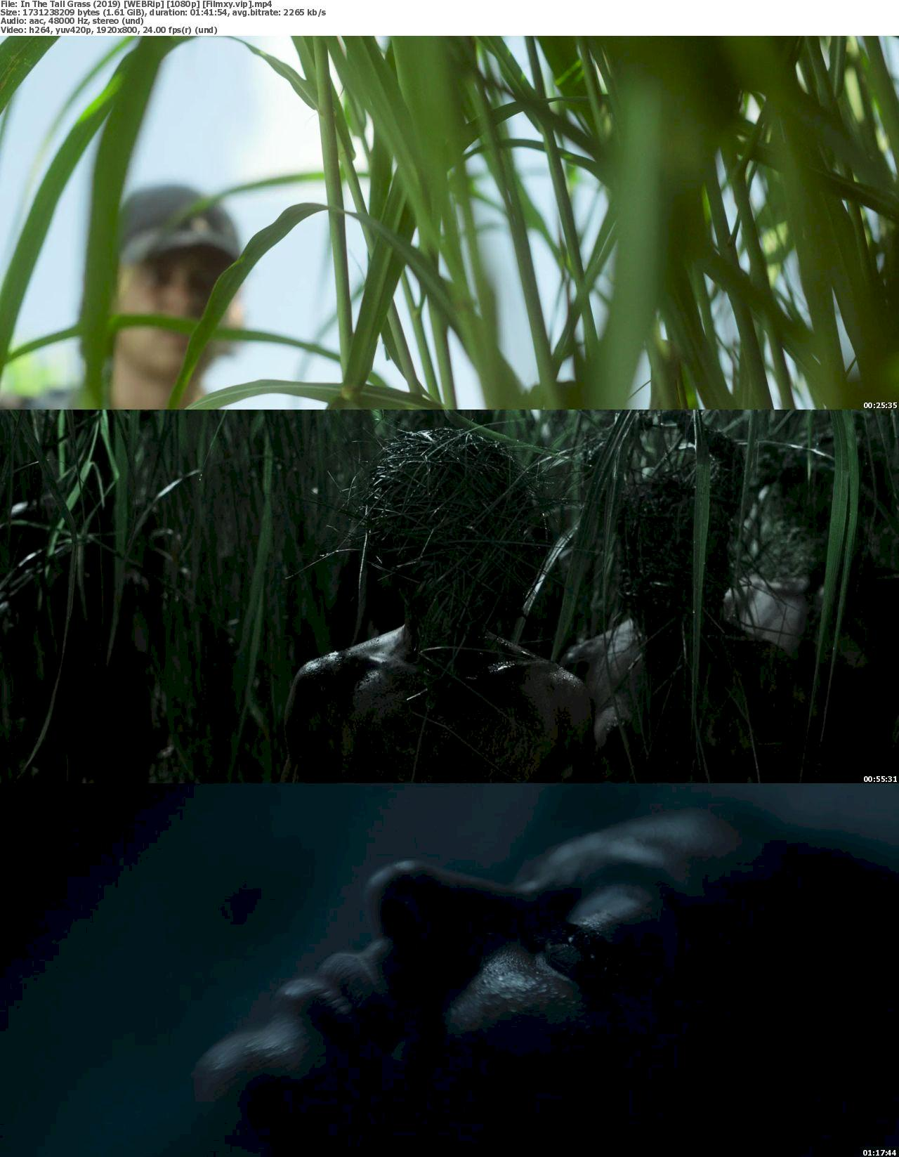 In the Tall Grass (2019) [720p & 1080p] WEB-Rip Free Movie Watch & Download 1080p Screenshot