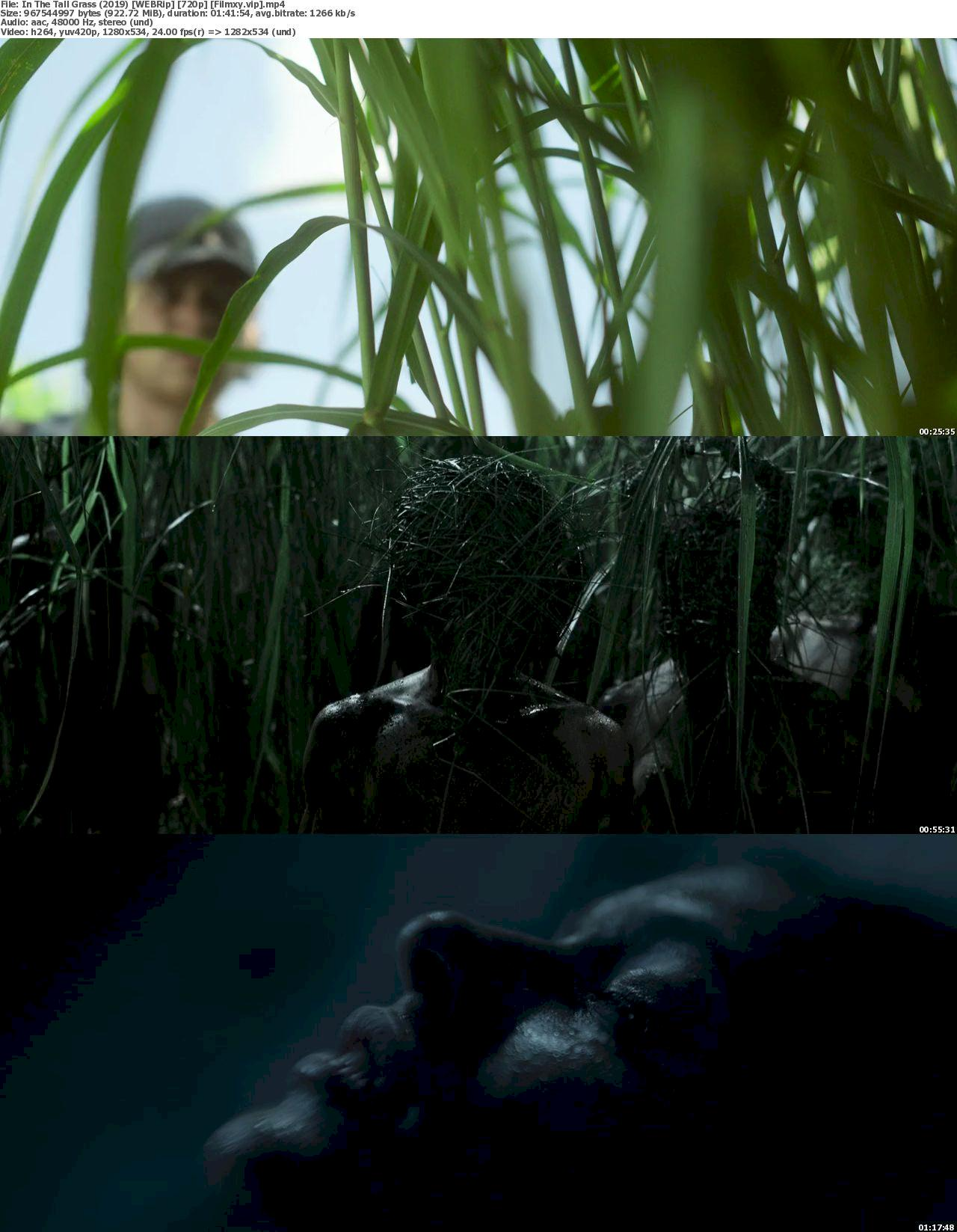 In the Tall Grass (2019) [720p & 1080p] WEB-Rip Free Movie Watch & Download 720p Screenshot