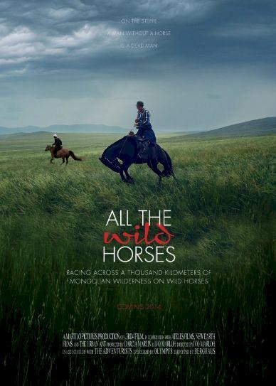All the Wild Horses Cover