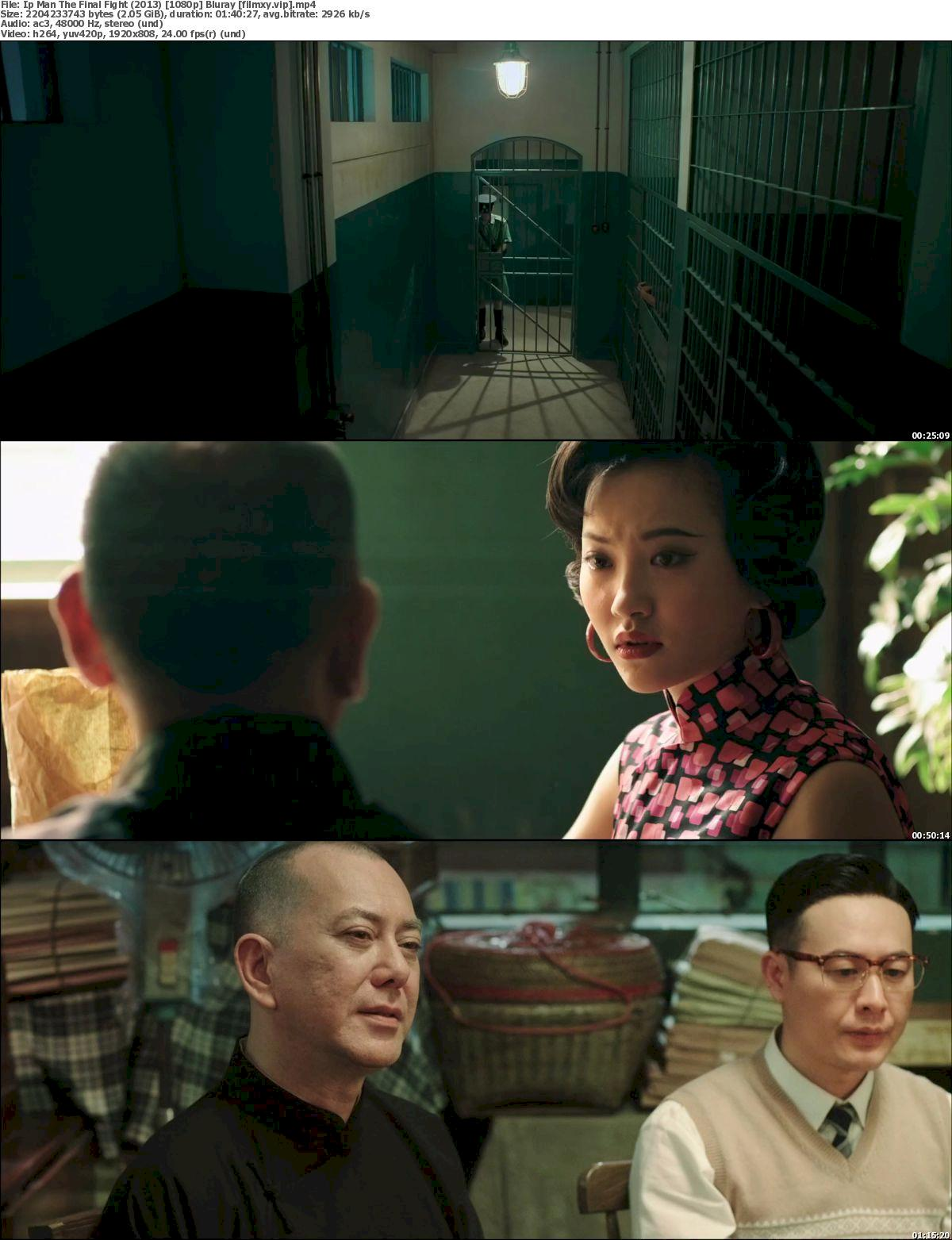 Ip Man The Final Fight (2013) 1080p Screenshot